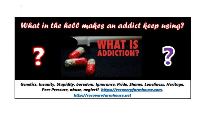 For ANYBODY Who Wants to Understand ADDICTION
